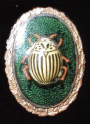 Знак «За борьбу с колорадским жуком»