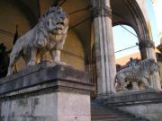 Мраморные львы перед фасадом Фельдхеррнхалле