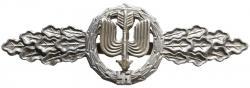 Серебренная планка дневных истребителей Люфтваффе