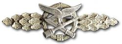 Реплика серебренной планки За ближний бой Военно-воздушных сил Люфтваффе