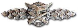 Реплика бронзовой планки За ближний бой Военно-воздушных сил Люфтваффе