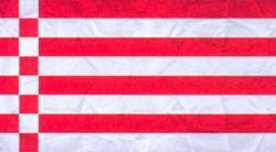Лоцманский флаг, применявшийся на реке Везер