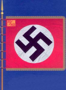 Штурмовое знамя штурмбанна SA с золотым приборным цветом и двухцветным кантом вокруг нашивки