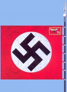 Флаги Национал-социалистического летного корпуса
