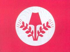 Флаг RAD (1931 – 1935)