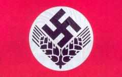 Общий флаг RAD