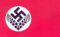 Флаг женской секции RAD