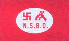 Первоначальный флаг NSBO